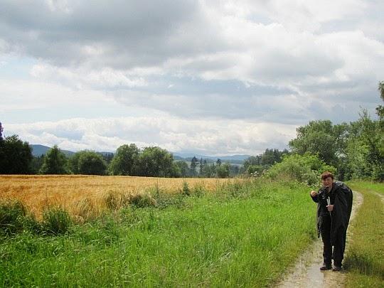 Pola należące do wsi Gierałcice.