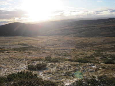 Hillwalking, a view across Deeside for walkers, Morven