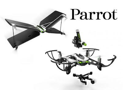 parrot mambo y parrot swing