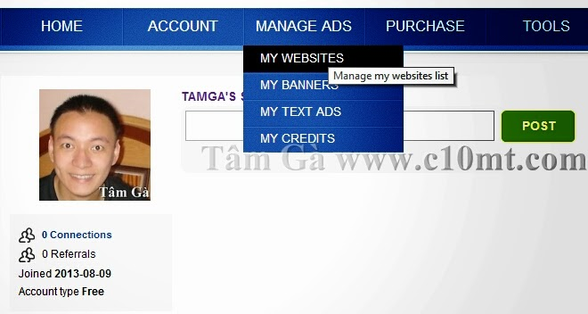 Manage my website list Hitlink traffic website