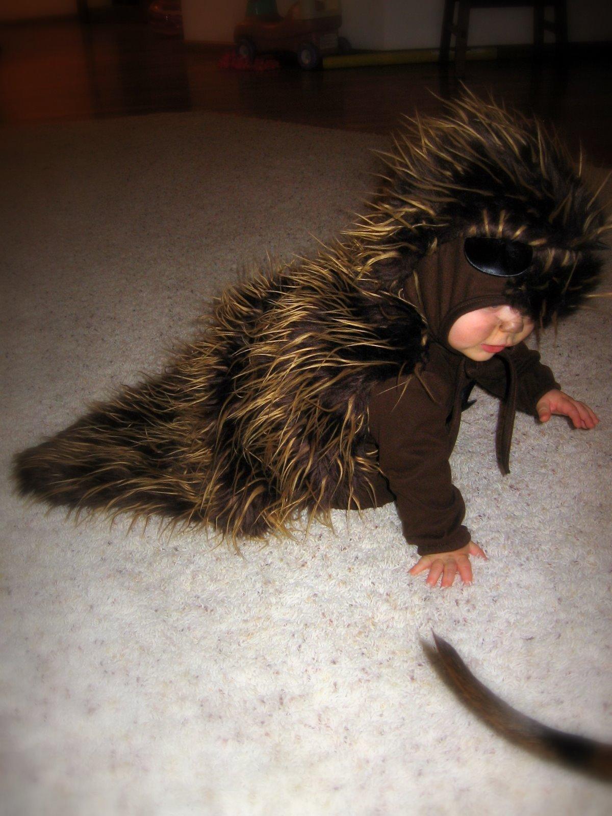 Porcupine Halloween CostumeAwesome Halloween Costume This Is Hilarious & Porcupine Halloween Costume - The Halloween