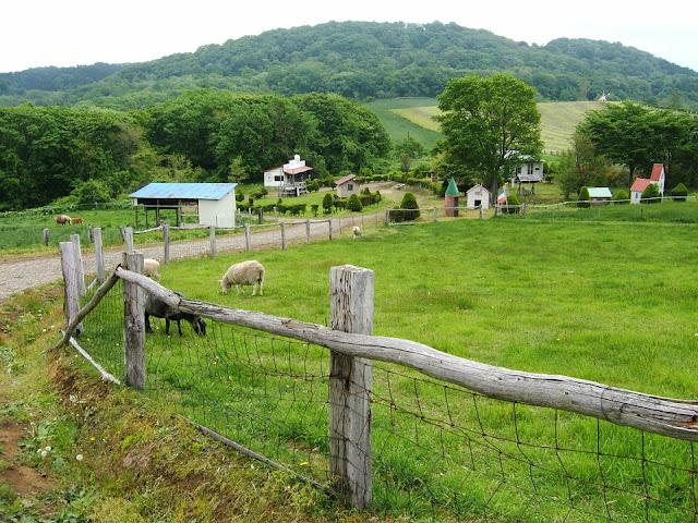 Kontrak Pekerjaan Untuk Seekor Domba Jam Kerja Selama 8 Jam