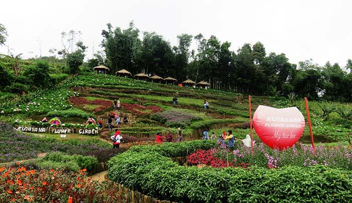 Kutabawa Flower Garden, Purbalingga
