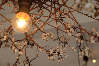 長野県安曇野穂高の植物×古道具 kokageya 植物のシェード