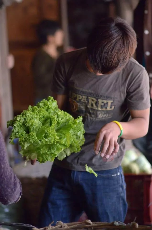 Lettuce Cleaner Baguio City Public Market Hangar Section Cordillera Administrative Region Philippines