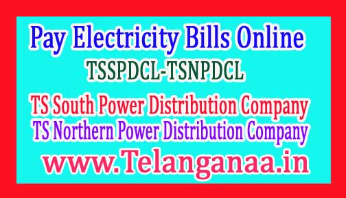 Pay Electricity TS Bill Online TSSPDCL-TSNPDCL Electricity Board