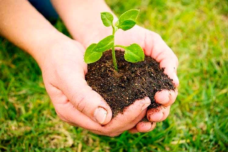 Medidas de Conservacion Ambiental