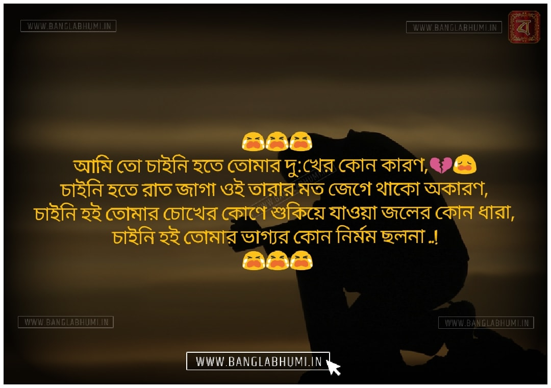 Facebook Bangla Sad Love Shayari Status Free Download and share