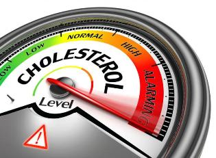 Fighting High Cholesterol in Healthy Aging