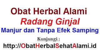 Obat herbal alami radang ginjal, manjur dan tanpa efek samping