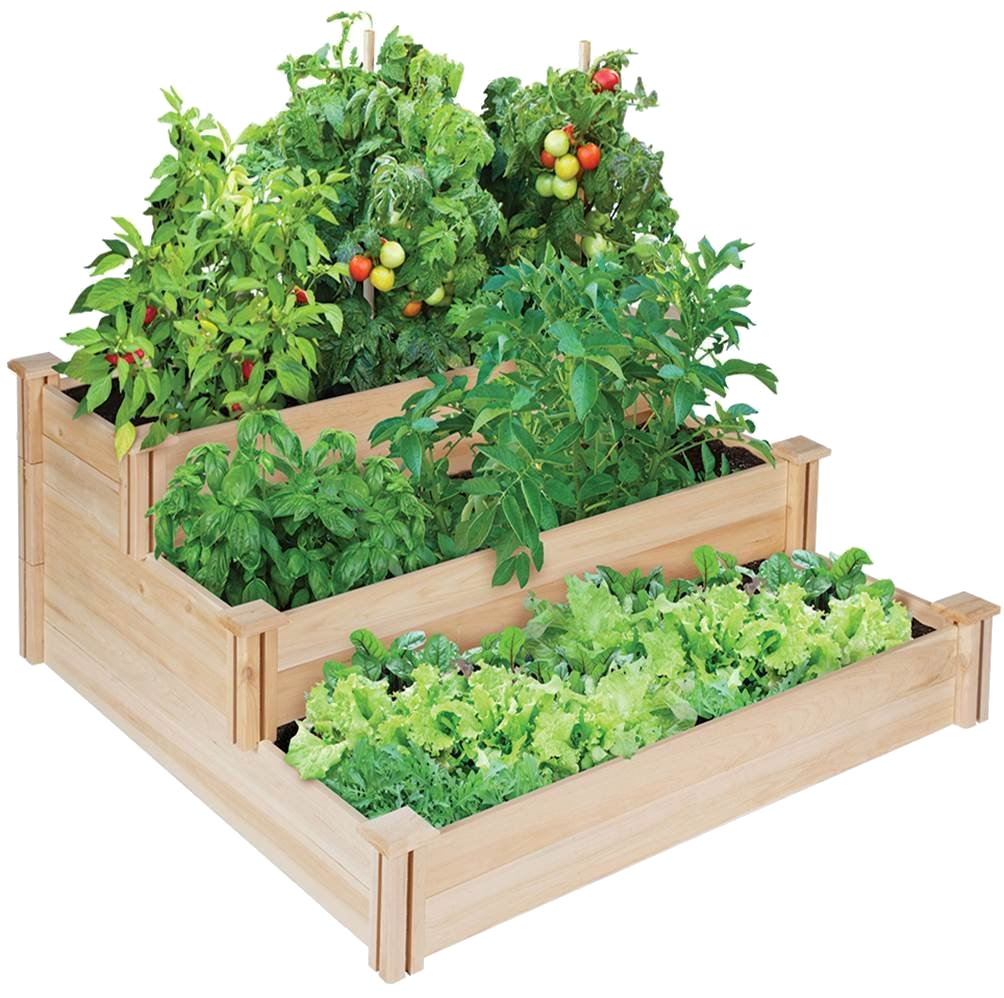 Raised Garden Beds: How To Build A Bed In 4 Simple Steps