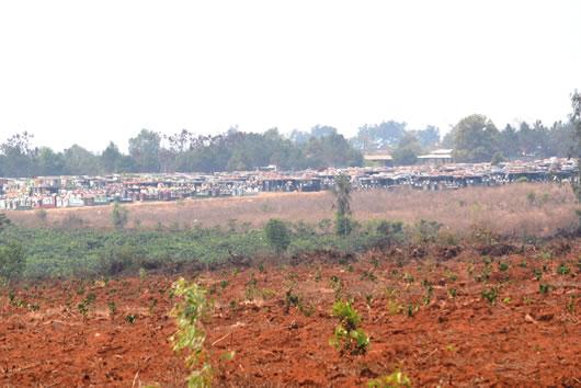 Gia Lai: Cán bộ đua nhau chiếm dụng đất công