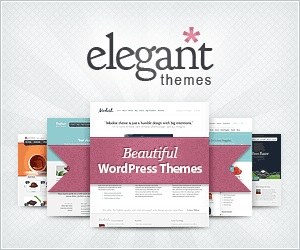 Try the Divi theme
