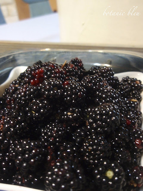 Wild Alabama blackberries burst with flavor