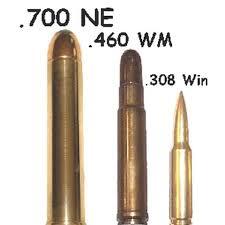 AMMO AND WEAPONS / MUNICIJA I ORUŽJE :  460 Weatherby Magnum