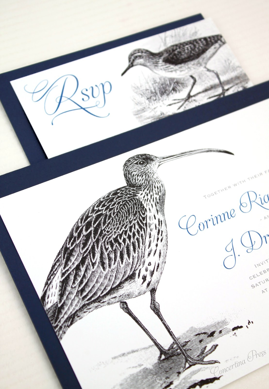 Curlew and Sandpiper Wedding Invitations for Lovebirds who LOVE birds - feather detail - from Concertina Press