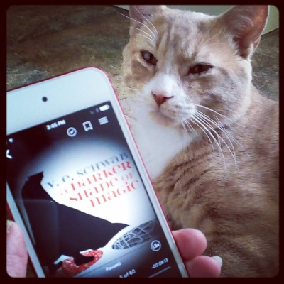 A pale ginger, cat, Ollie, sits on a stone-patterned linoleum floor. A pale hand holds a red-bordered iPod in front of him. It has A Darker Shade of Magic's cover on its screen, featuring the silhouette of a cloaked figure stepping from a red, circular street map to a black, circular street map.