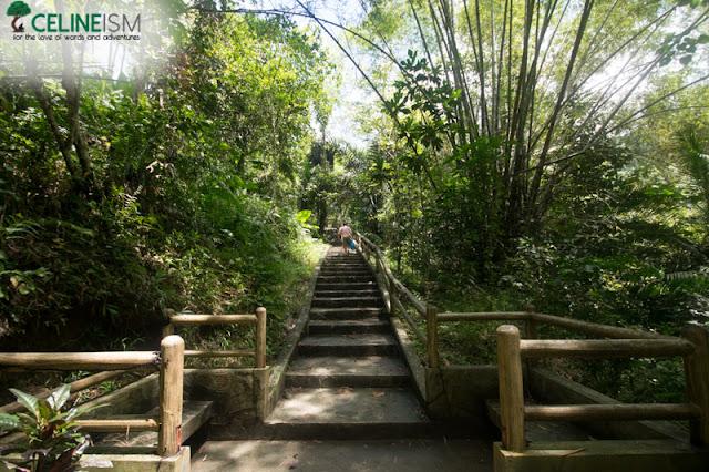merloquet falls diy guide