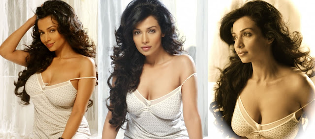 Actress Asha Saini Hot Photoshoot