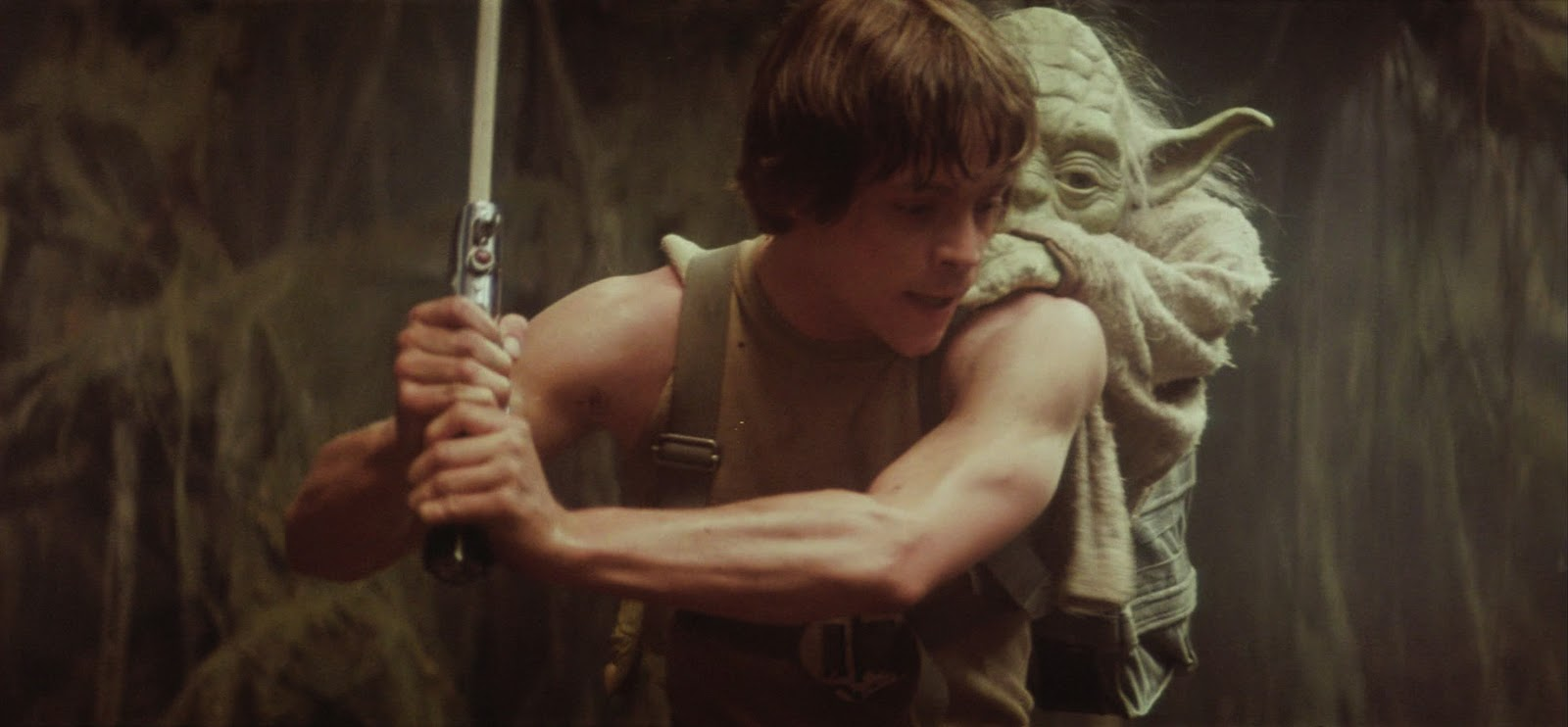 Image result for yoda training luke