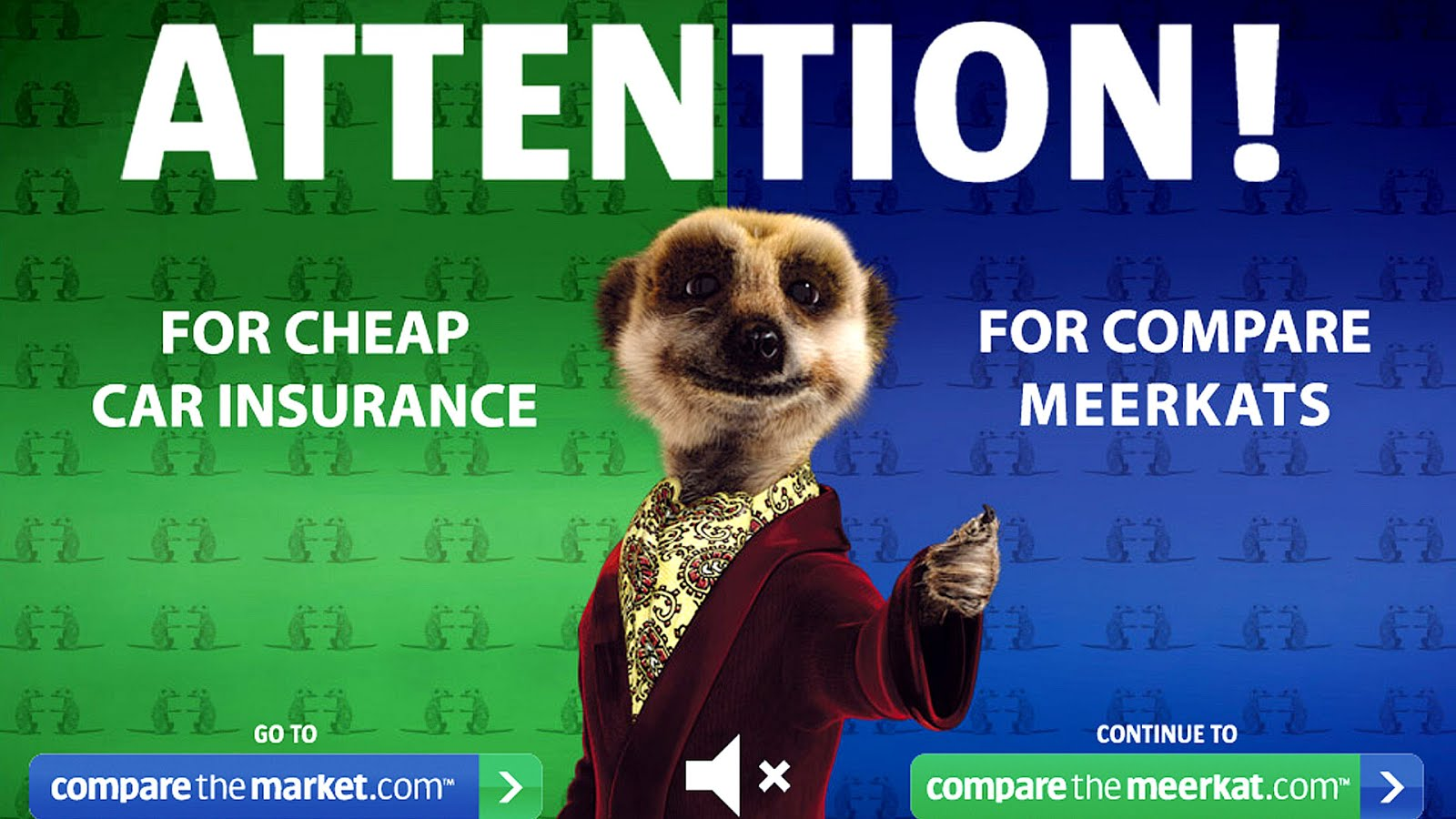 Compare The Market Car Insurance Quote Marketing ...