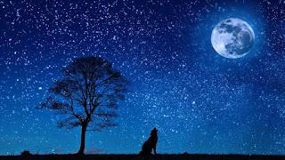 The Night / Alexander Pushkin, English poetry