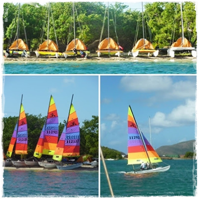 hobie-cats-in-Tortola-BVI