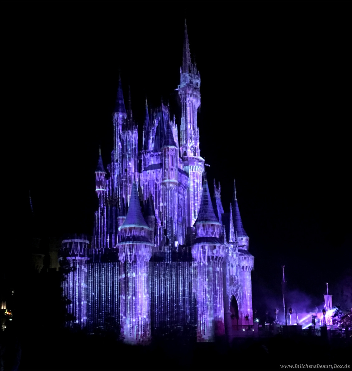 Disney World Orlando Florida - Cinderella Castle - Frozen