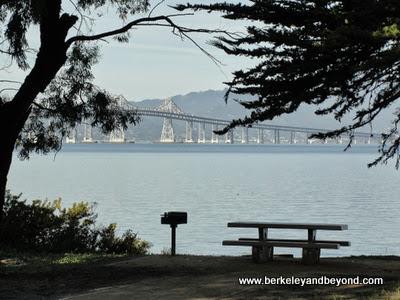 view of Richmond Bridge at Pt. Molate Beach Park in Richmond, CA