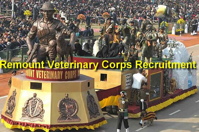 Remount Veterinary Corps Recruitment
