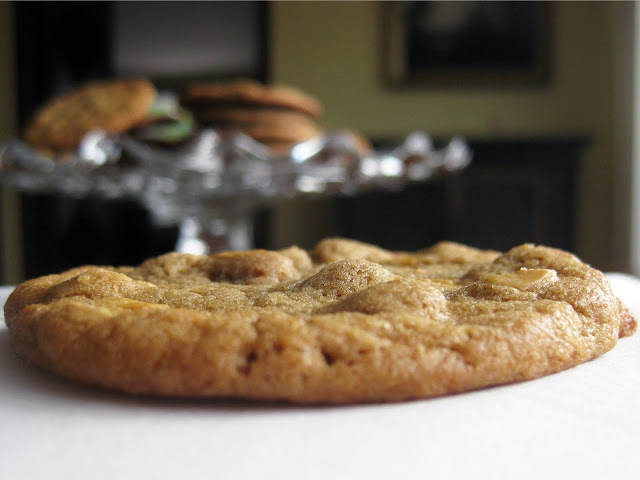 slice and bake cookies with pecans and butterscotch chips