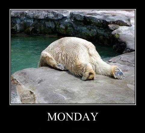 Funny Picture - I don't like Monday