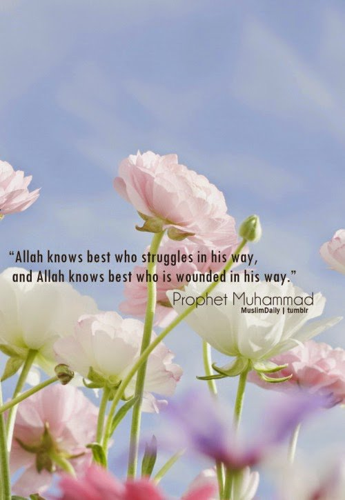 Prophet Mohammad ﷺ Said Allah Knows Best Who Struggles In His Way