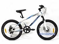 Sepeda Gunung Wimcycle Roadchamp DX 20 Inci