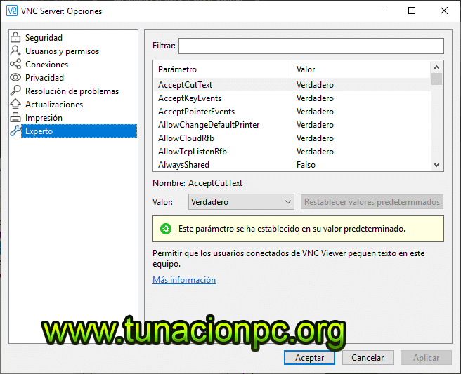 descargar VNC Connect Enterprise full español