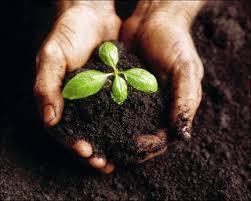 pengertian tanah dan jenis-jenis tanah
