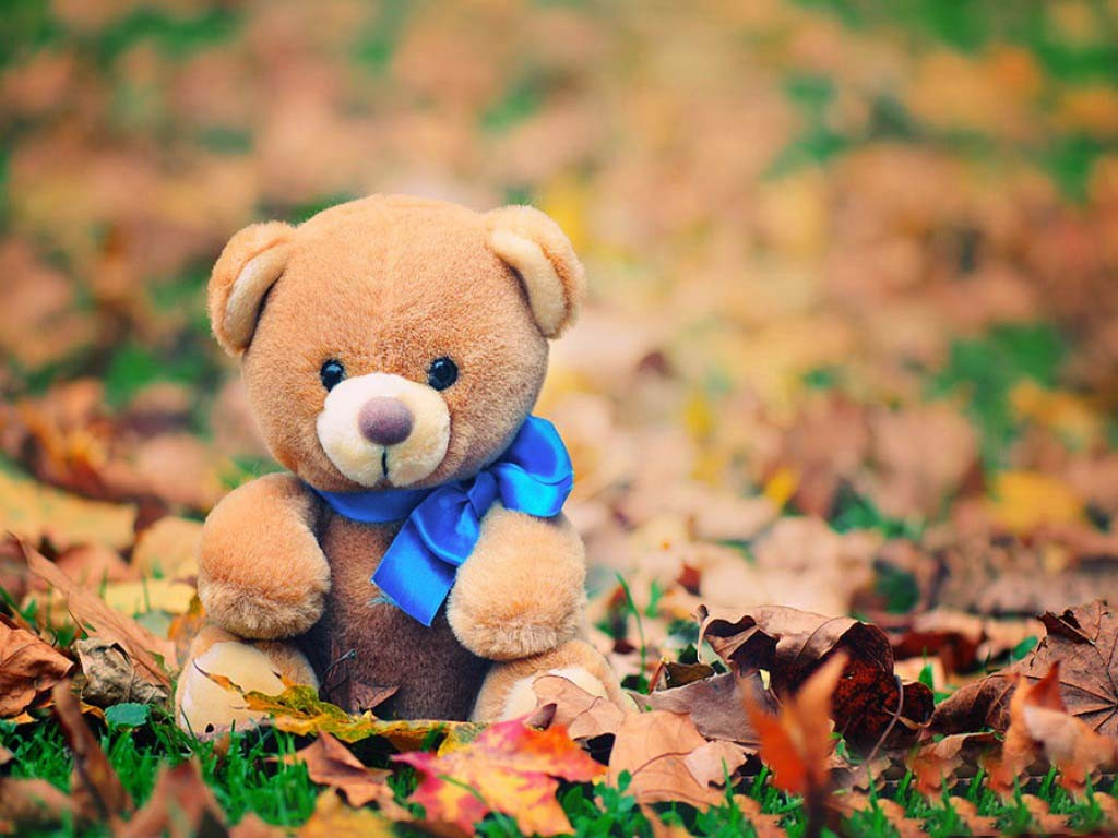 teddy bear love images | 85+ beautiful hd wallpapers & pics for dp