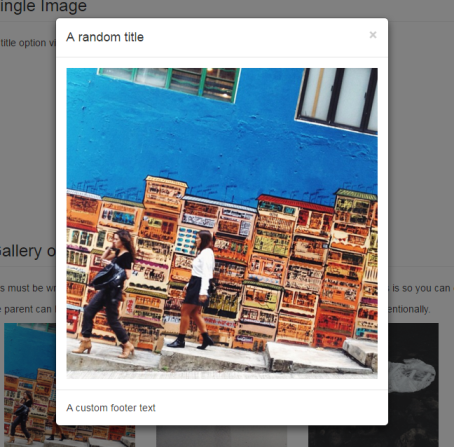 Lightbox Gallery Plugin For Bootstrap 3 For Single Image Using