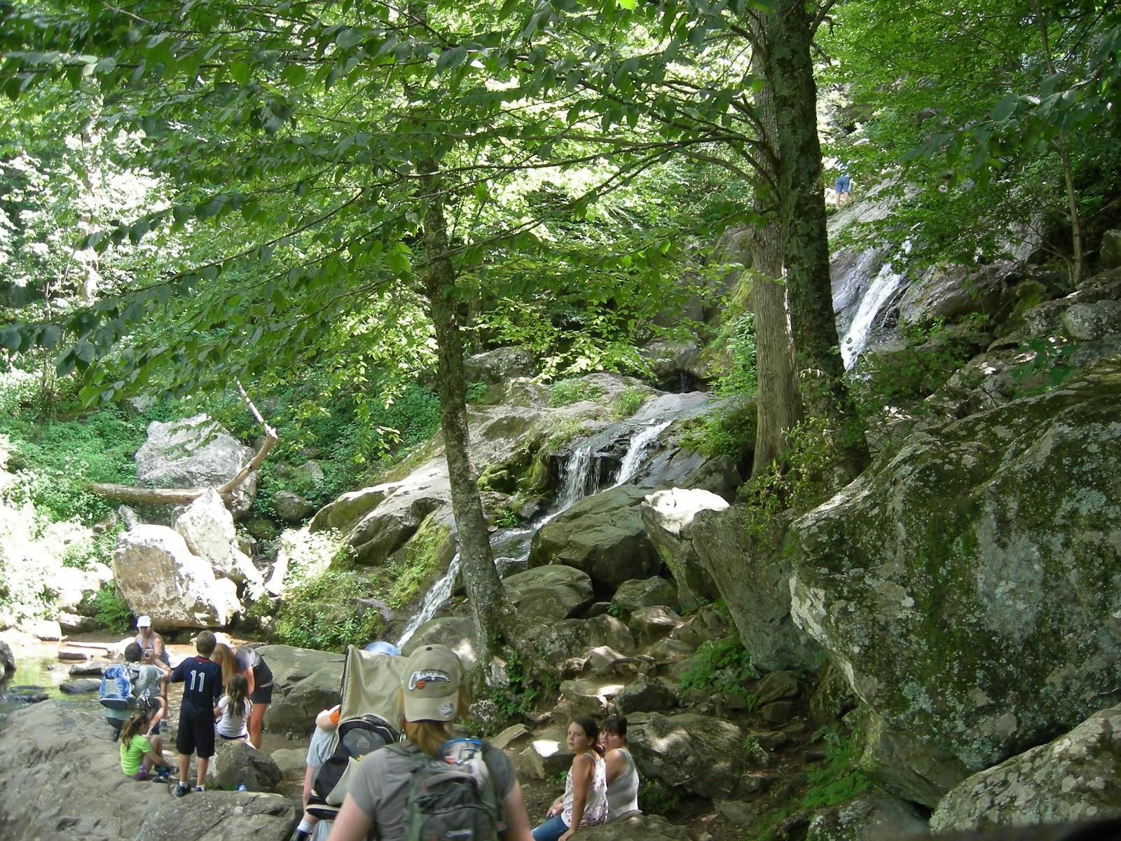 Dark Hollow Falls Hiking Trail - Skyline Drive - VA