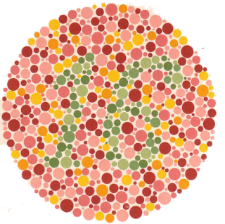 Ishihara Color Test