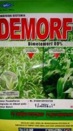 Demorf,Arashi, Vitaflora,Bebas Bulai