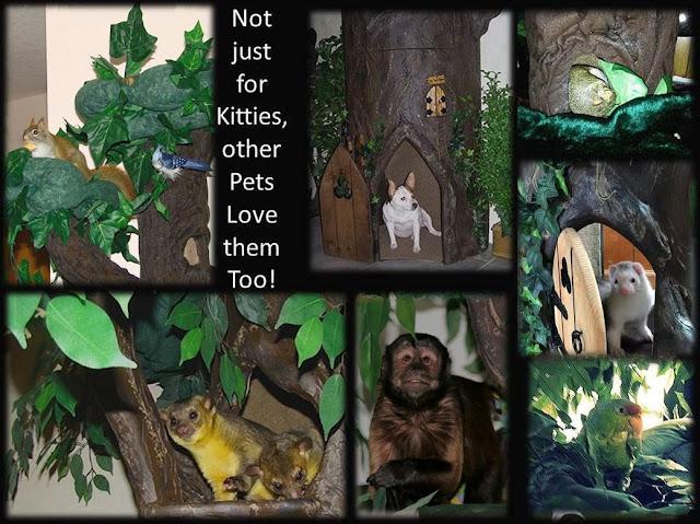 Exotic Pet Furniture