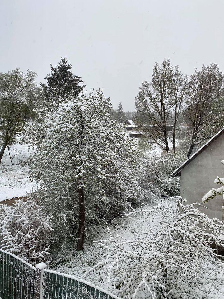 Sniegs maijā 3