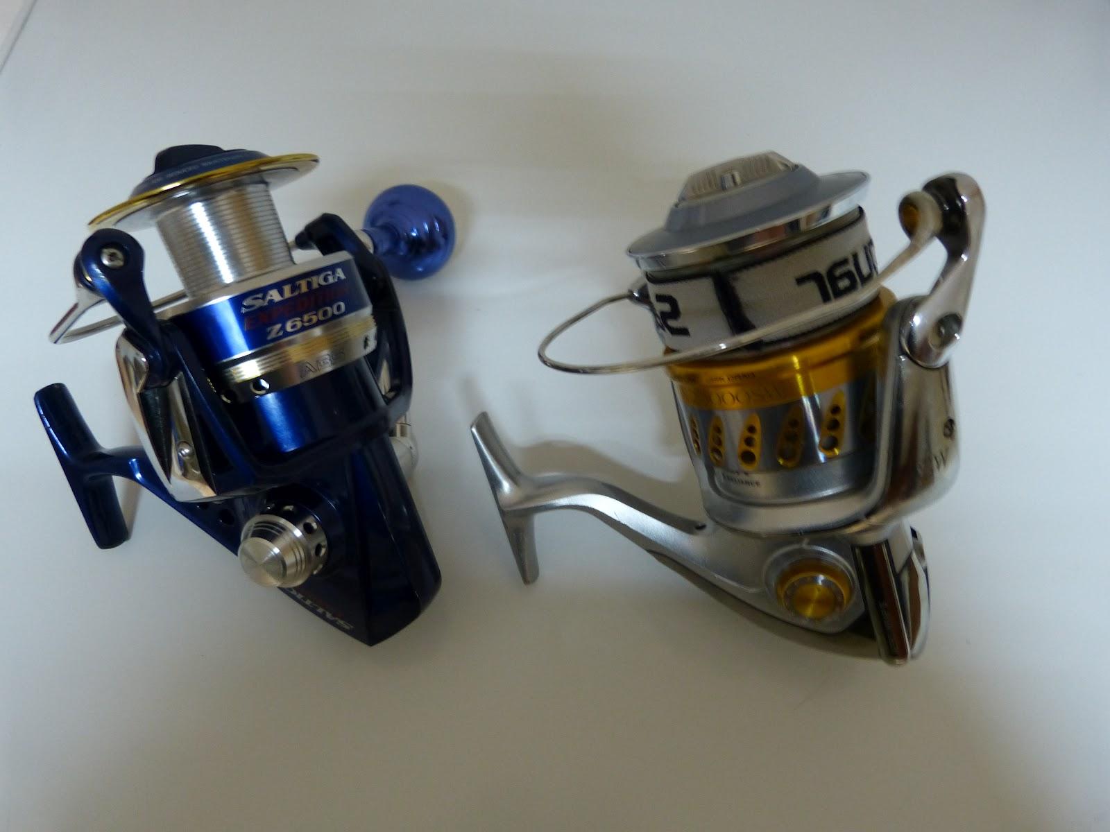pesca cintina  shimano stella vs daiwa saltiga