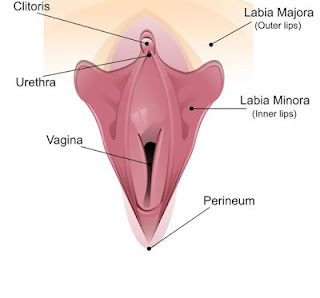 Enlarged clitoris in women
