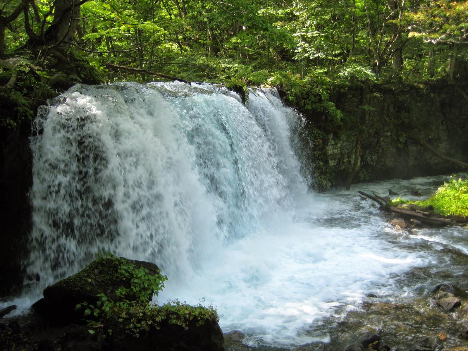 Choshi-Otaki Fall Oirase Gorge (Oirase Keiryuu) 奥入瀬渓流 銚子大滝