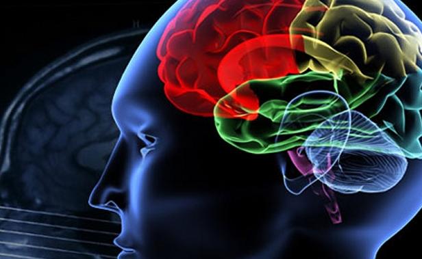 Faktor yang Mempengaruhi Kecerdasan Emosi