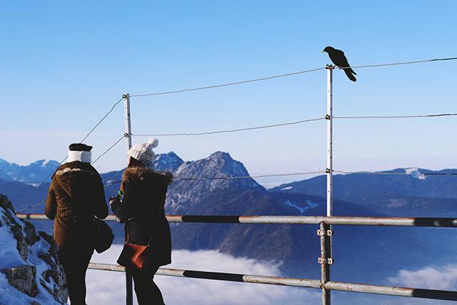 Untersberg Crows