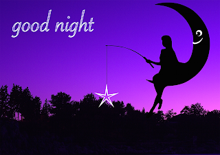 Hindi good night status