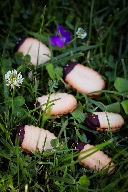 biscuits, bibittes,trilobites,meilleurs, recettes,recette, photo-emmanuelle-ricard,blogue-anthracite-aime